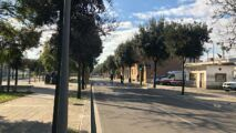 Viale Università, Lecce (ph. Davide Milone)
